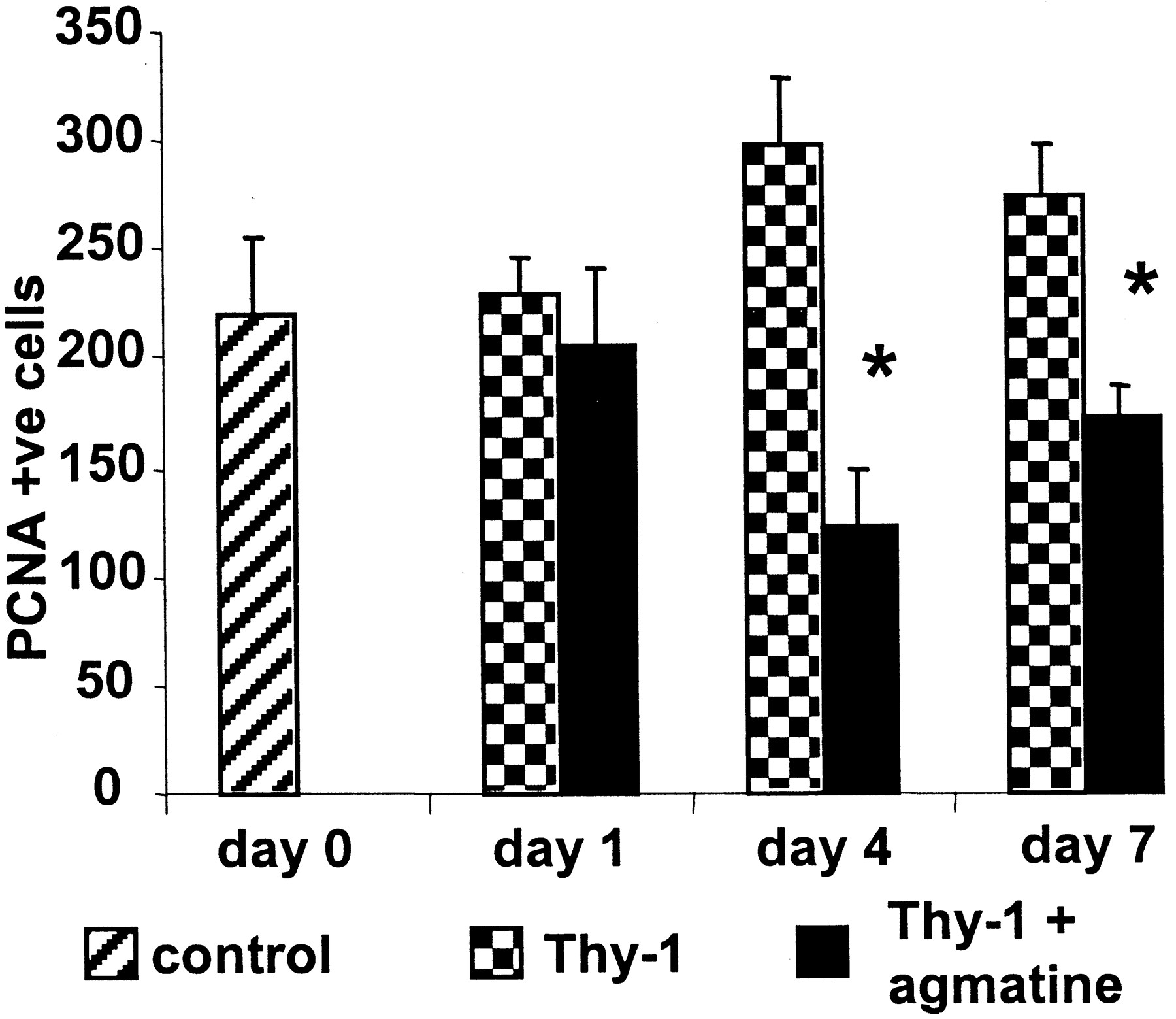 Agmatine Inhibits Cell Proliferation and Improves Renal Function in