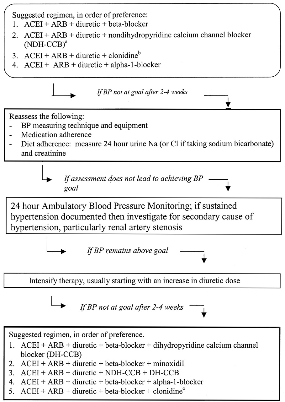Management of Glomerular Proteinuria: A Commentary
