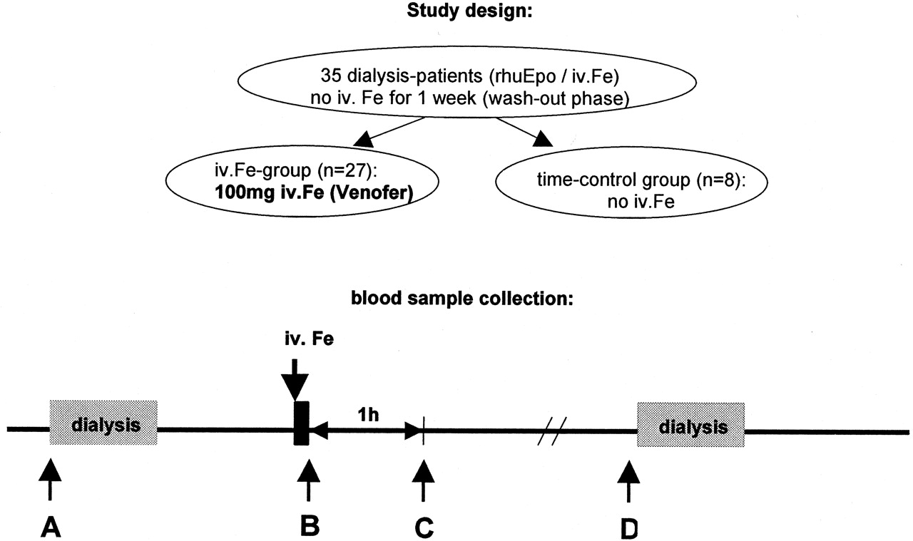 Non–Transferrin-Bound Iron in the Serum of Hemodialysis Patients Who