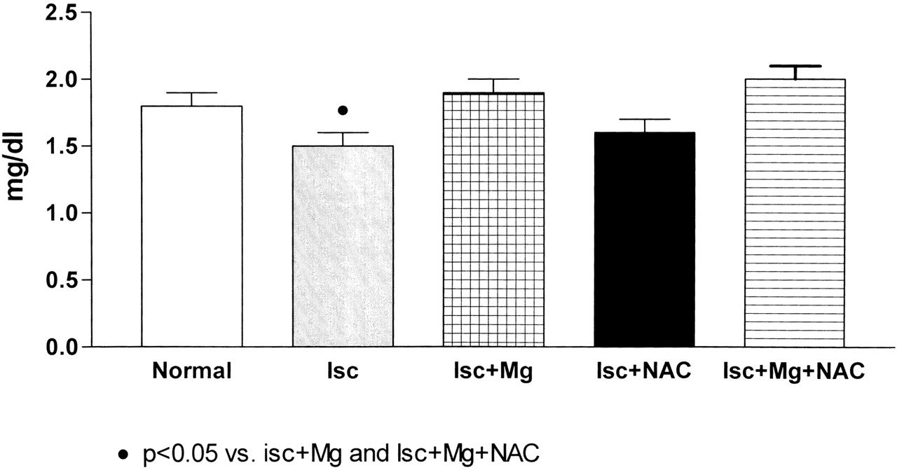 Magnesium Supplementation Combined with N-Acetylcysteine