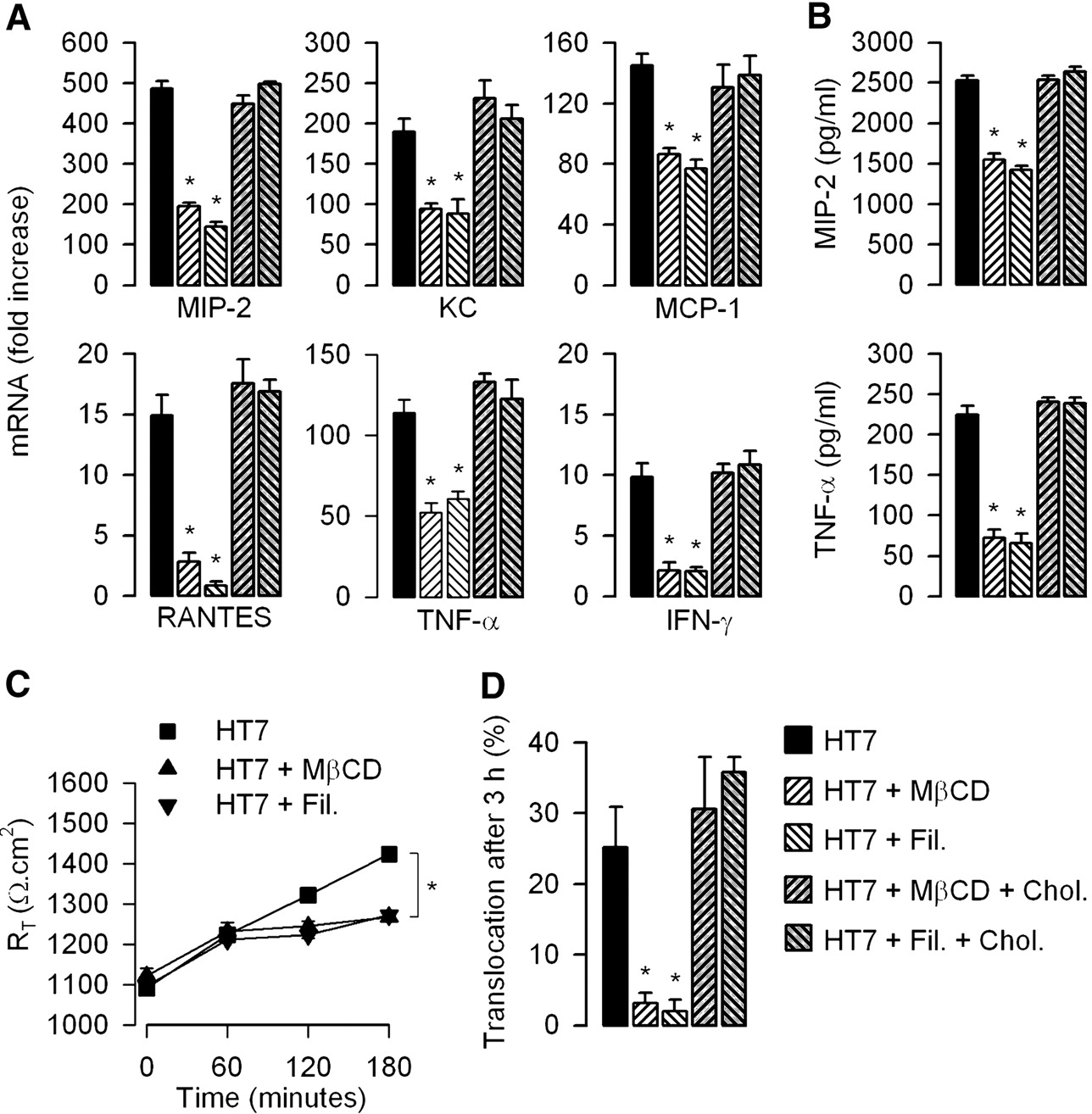 TLR4 Facilitates Translocation of Bacteria across Renal