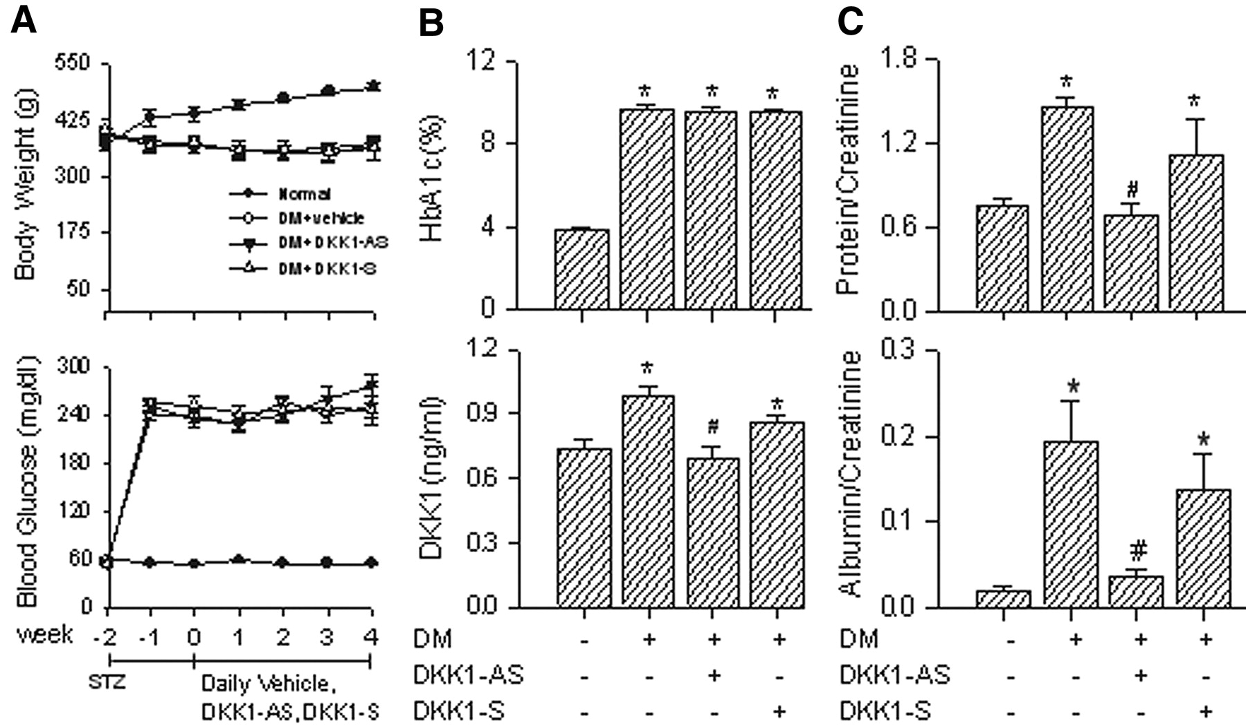 Dickkopf-1 Promotes Hyperglycemia–Induced Accumulation of