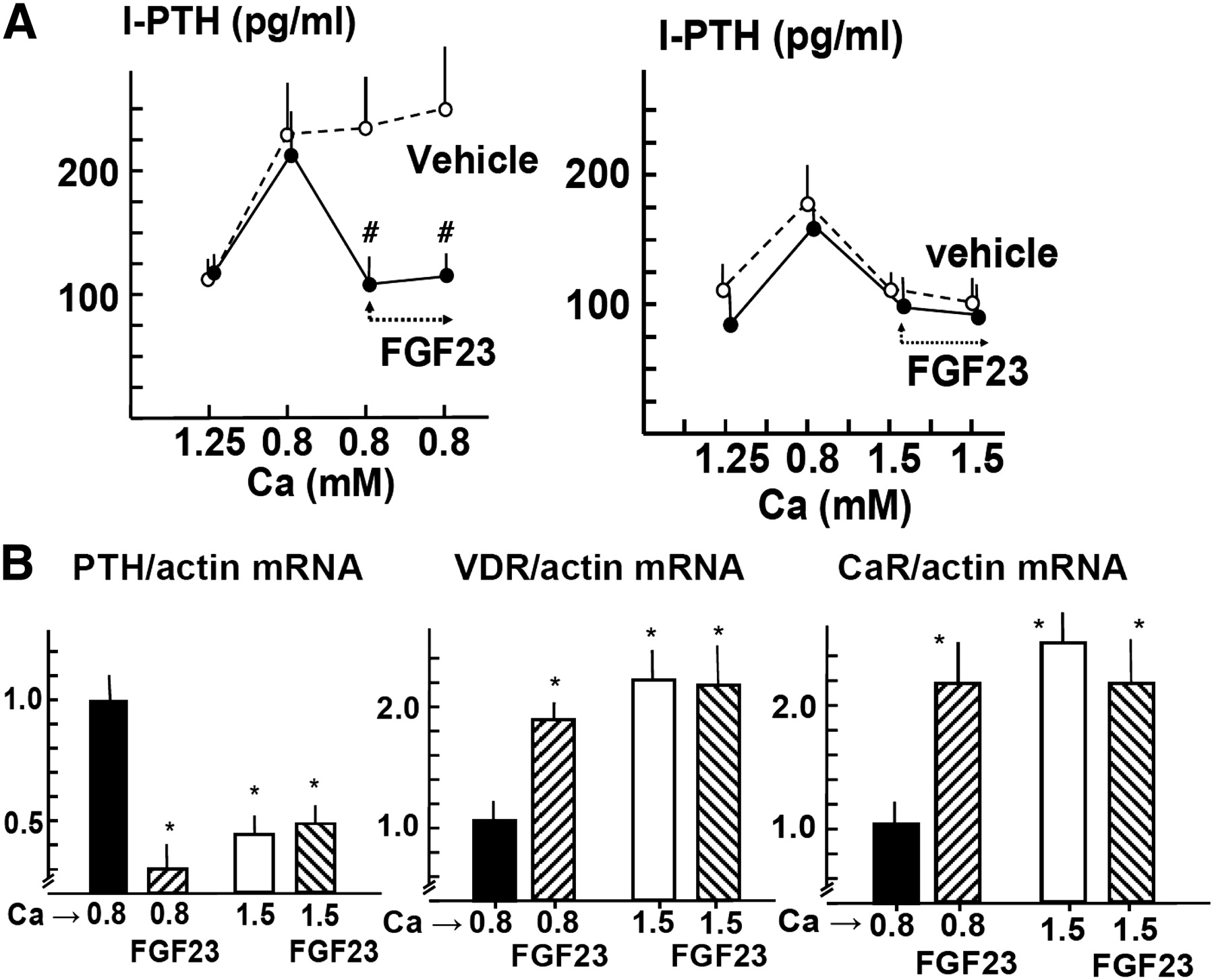 Fgf23 Fails To Inhibit Uremic Parathyroid Glands American Society