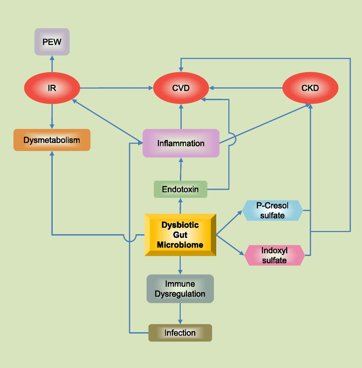Name Circuitdiagramjpgviews 3381size 117 Kb