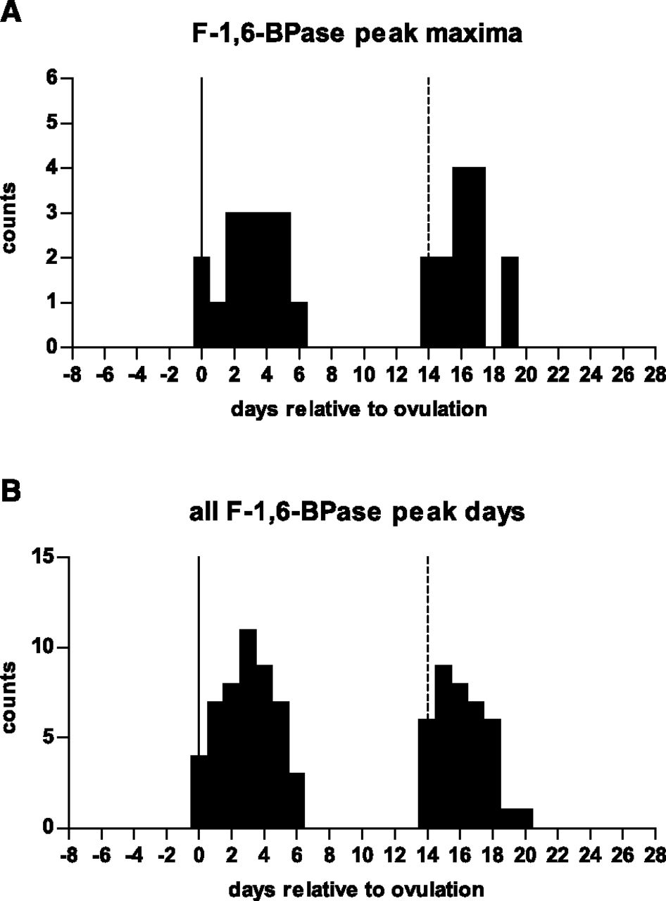 Sex Differences in Renal Proximal Tubular Cell Homeostasis