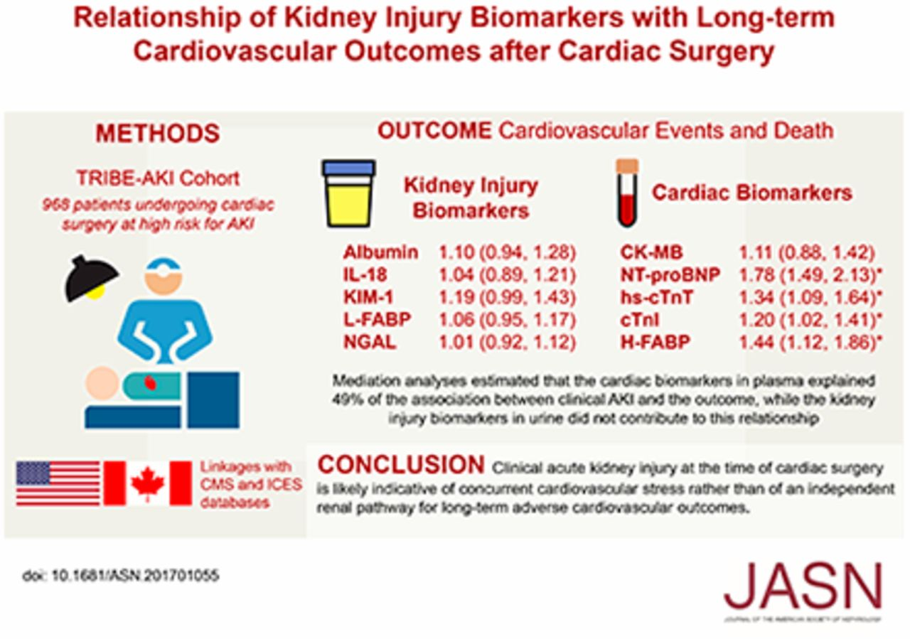 Relationship of Kidney Injury Biomarkers with Long-Term