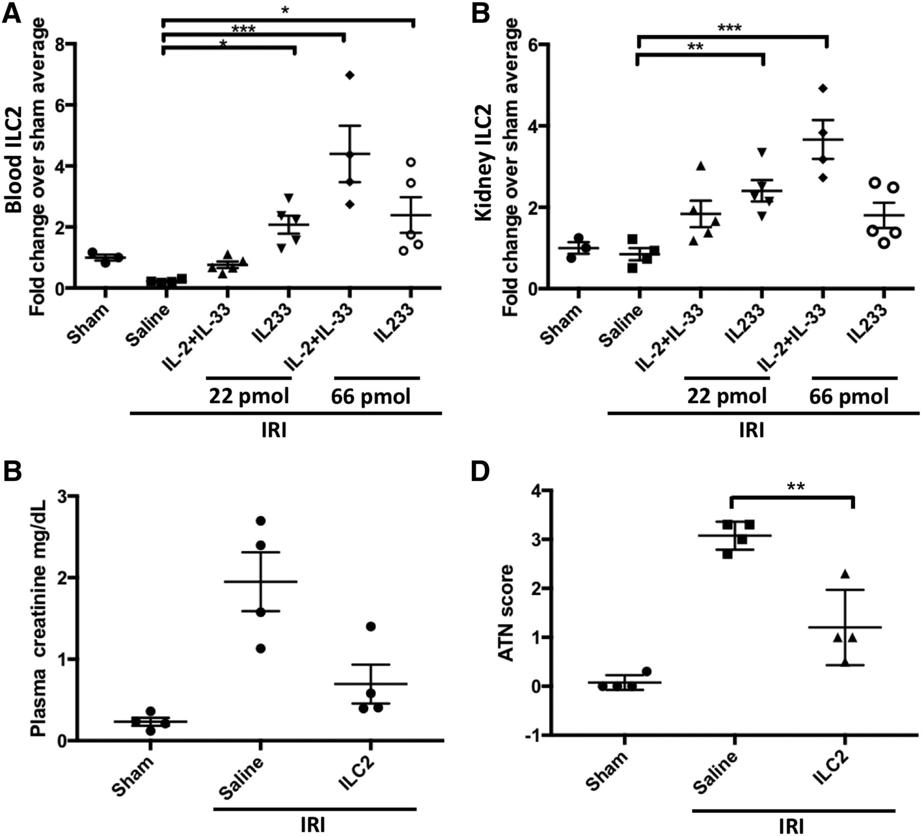 IL233, A Novel IL-2 and IL-33 Hybrid Cytokine, Ameliorates Renal
