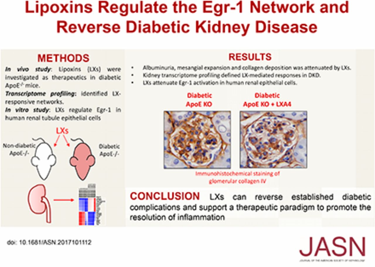 Lipoxins Regulate the Early Growth Response–1 Network and