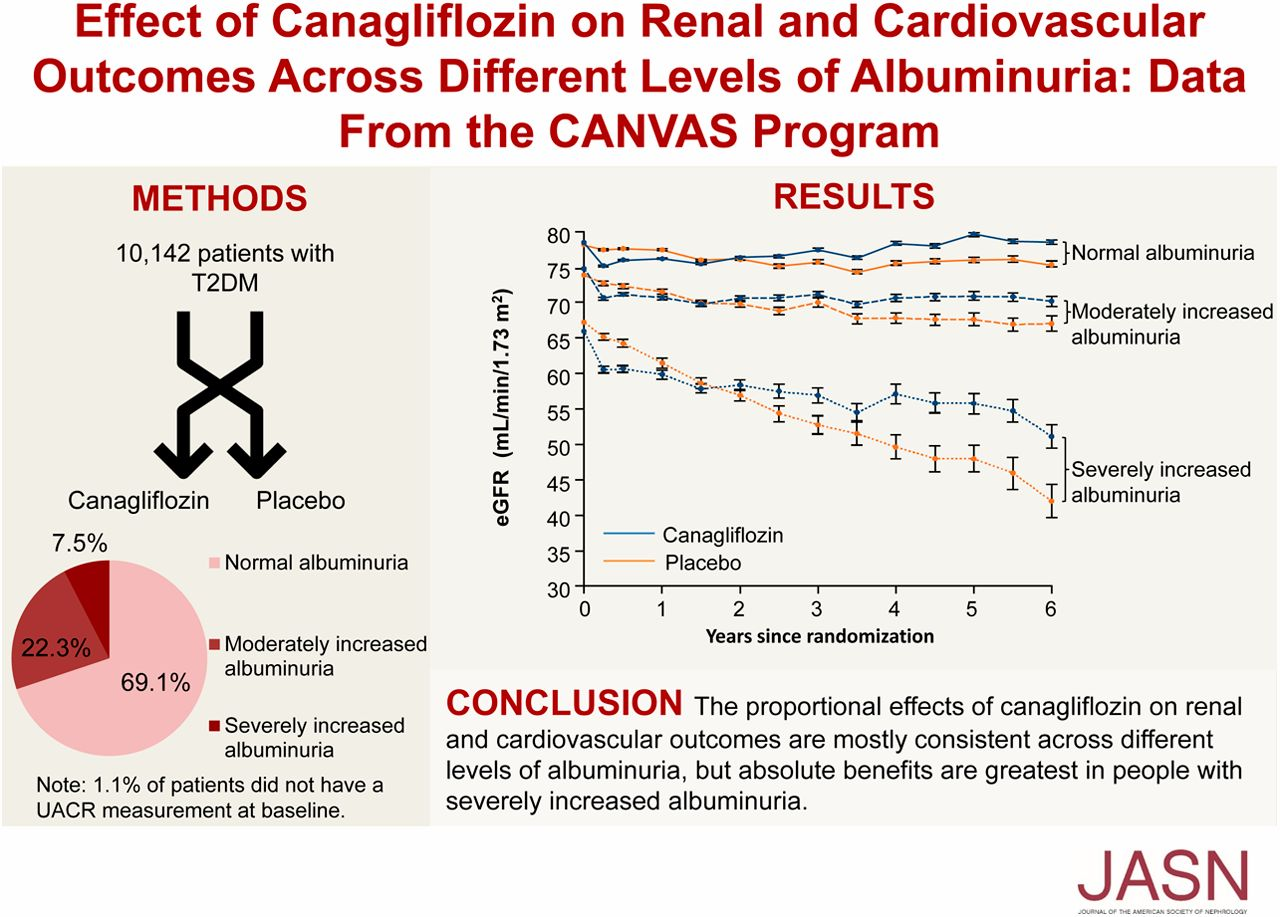 Effect of Canagliflozin on Renal and Cardiovascular Outcomes