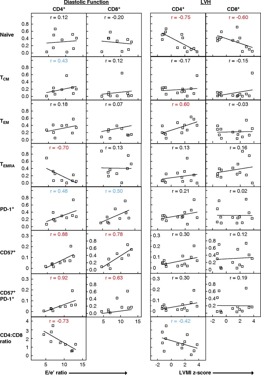 T Cells Play a Causal Role in Diastolic Dysfunction during
