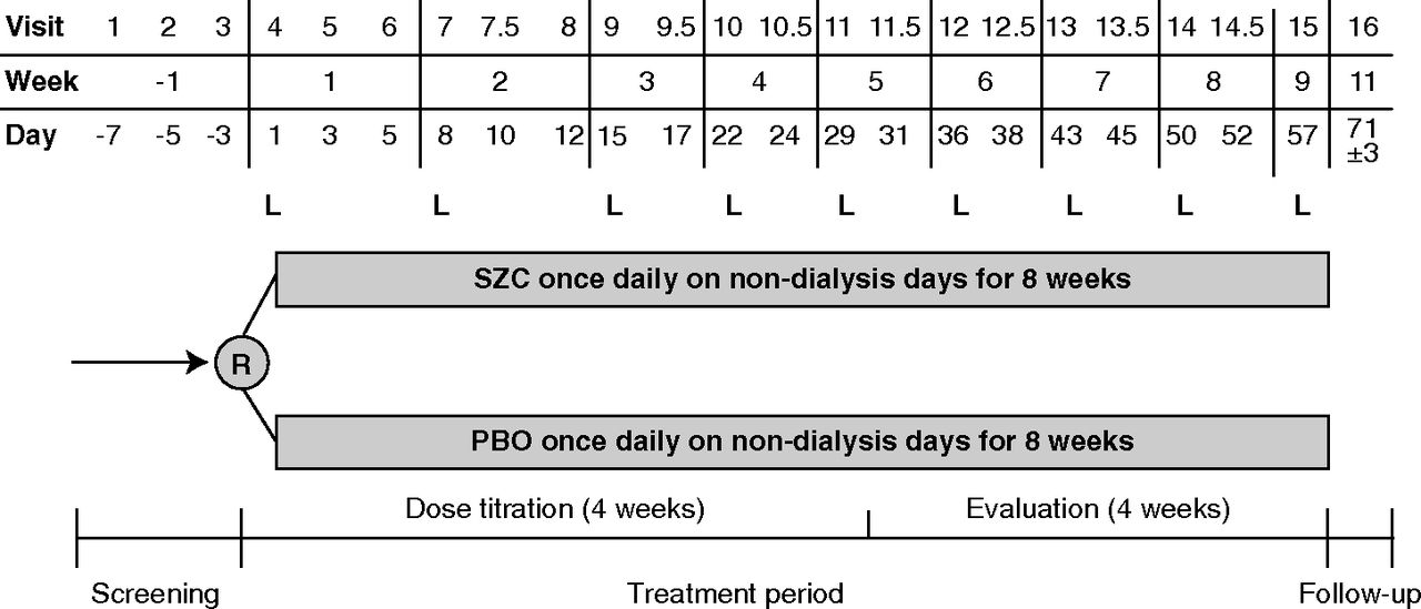 A Phase 3b, Randomized, Double-Blind, Placebo-Controlled