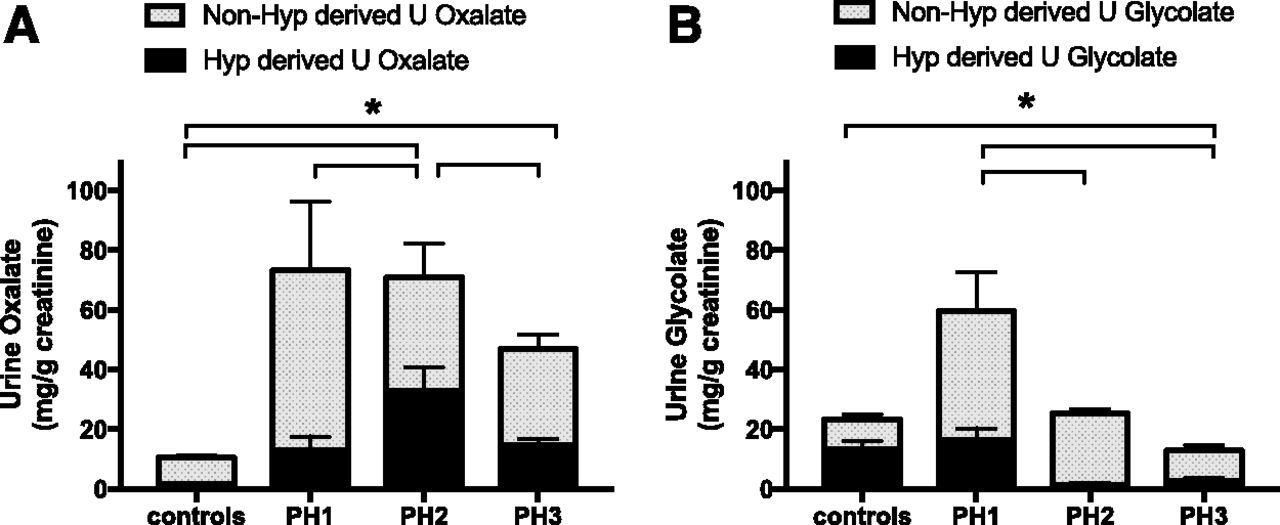 Hydroxyproline Metabolism and Oxalate Synthesis in Primary