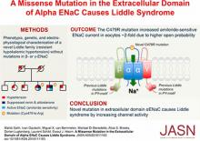 A Missense Mutation in the Extracellular Domain of <em>α</em>ENaC Causes Liddle Syndrome
