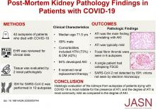 Postmortem Kidney Pathology Findings in Patients with COVID-19