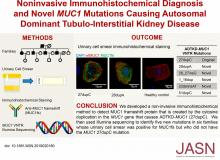 Noninvasive Immunohistochemical Diagnosis and Novel <em>MUC1</em> Mutations Causing Autosomal Dominant Tubulointerstitial Kidney Disease