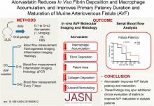 Atorvastatin Reduces <em>In Vivo</em> Fibrin Deposition and Macrophage Accumulation, and Improves Primary Patency Duration and Maturation of Murine Arteriovenous Fistula
