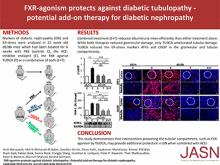 Farnesoid X Receptor Agonism Protects against Diabetic Tubulopathy: Potential Add-On Therapy for Diabetic Nephropathy