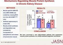 Mechanisms Regulating Muscle Protein Synthesis in Chronic Kidney Disease
