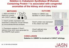 Deletion in the <em>Cobalamin Synthetase W Domain–Containing Protein 1</em> Gene Is associated with Congenital Anomalies of the Kidney and Urinary Tract