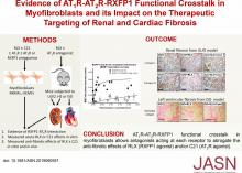 AT1R-AT2R-RXFP1 Functional Crosstalk in Myofibroblasts: Impact on the Therapeutic Targeting of Renal and Cardiac Fibrosis