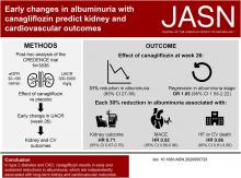Early Change in Albuminuria with Canagliflozin Predicts Kidney and Cardiovascular Outcomes: A <em>Post</em> <em>Hoc</em> Analysis from the CREDENCE Trial