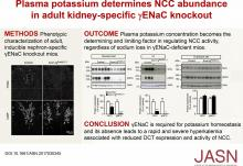 Plasma Potassium Determines NCC Abundance in Adult Kidney-Specific <em>γ</em>ENaC Knockout