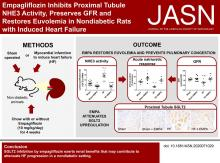 Empagliflozin Inhibits Proximal Tubule NHE3 Activity, Preserves GFR, and Restores Euvolemia in Nondiabetic Rats with Induced Heart Failure