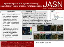 Spatiotemporal ATP Dynamics during AKI Predict Renal Prognosis