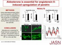 Aldosterone Is Essential for Angiotensin II-Induced Upregulation of Pendrin