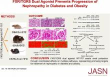 FXR/TGR5 Dual Agonist Prevents Progression of Nephropathy in Diabetes and Obesity