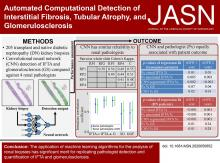 Automated Computational Detection of Interstitial Fibrosis, Tubular Atrophy, and Glomerulosclerosis