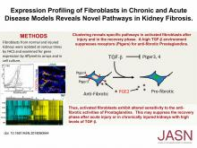 Expression Profiling of Fibroblasts in Chronic and Acute Disease Models Reveals Novel Pathways in Kidney Fibrosis
