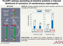 Phospholipase A2 Receptor 1 Epitope Spreading at Baseline Predicts Reduced Likelihood of Remission of Membranous Nephropathy