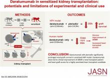 Daratumumab in Sensitized Kidney Transplantation: Potentials and Limitations of Experimental and Clinical Use