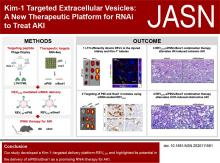 Kim-1 Targeted Extracellular Vesicles: A New Therapeutic Platform for RNAi to Treat AKI