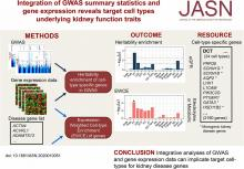 Integration of GWAS Summary Statistics and Gene Expression Reveals Target Cell Types Underlying Kidney Function Traits
