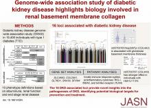 Genome-Wide Association Study of Diabetic Kidney Disease Highlights Biology Involved in Glomerular Basement Membrane Collagen