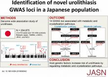 Novel Risk Loci Identified in a Genome-Wide Association Study of Urolithiasis in a Japanese Population
