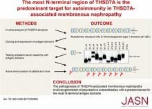 The Most N-Terminal Region of THSD7A Is the Predominant Target for Autoimmunity in THSD7A-Associated Membranous Nephropathy