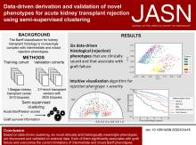 Data-driven Derivation and Validation of Novel Phenotypes for Acute Kidney Transplant Rejection using Semi-supervised Clustering