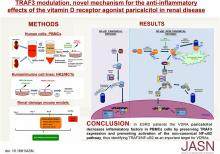 TRAF3 Modulation: Novel Mechanism for the Anti-inflammatory Effects of the Vitamin D Receptor Agonist Paricalcitol in Renal Disease