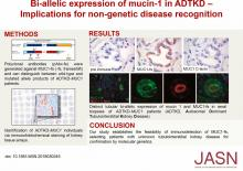 Biallelic Expression of Mucin-1 in Autosomal Dominant Tubulointerstitial Kidney Disease: Implications for Nongenetic Disease Recognition
