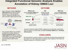 Integrated Functional Genomic Analysis Enables Annotation of Kidney Genome-Wide Association Study Loci