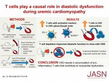 T Cells Play a Causal Role in Diastolic Dysfunction during Uremic Cardiomyopathy