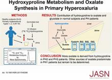 Hydroxyproline Metabolism and Oxalate Synthesis in Primary Hyperoxaluria