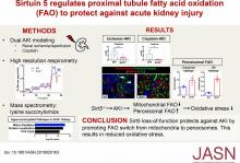 Sirtuin 5 Regulates Proximal Tubule Fatty Acid Oxidation to Protect against AKI