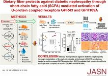 Dietary Fiber Protects against Diabetic Nephropathy through Short-Chain Fatty Acid–Mediated Activation of G Protein–Coupled Receptors GPR43 and GPR109A