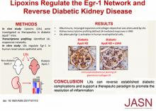 Lipoxins Regulate the Early Growth Response–1 Network and Reverse Diabetic Kidney Disease