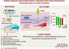 Kidney Disease-Associated <em>APOL1</em> Variants Have Dose-Dependent, Dominant Toxic Gain-of-Function