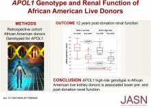 <em>APOL1</em> Genotype and Renal Function of Black Living Donors